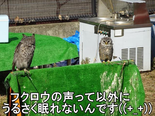 平塚市 N様 内窓プラマードUの取付工事